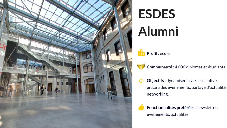 Le réseau des anciens élèves de l'ESDES Alumni